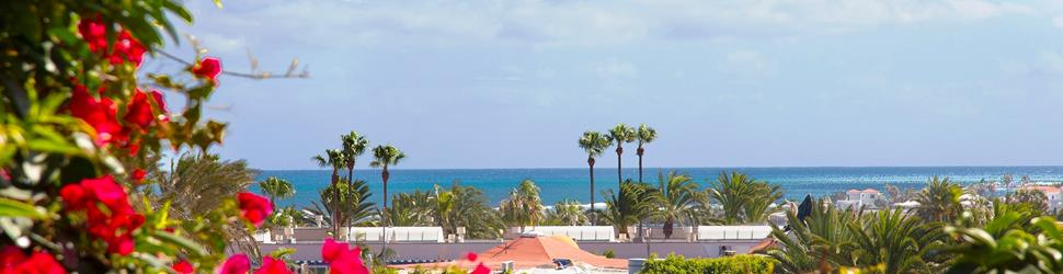 Fuerteventura - Yoga & Pilates im Losha Retreat