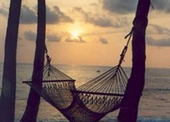 Bild 3 zum Reiseprogramm von Costa Rica for Family