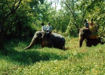 Bild 5 zum Reiseprogramm von Familienreise ins Paradis - von Norden nach Süden