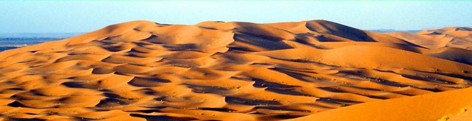 Südmarokko - Sternenglitzern - Mit den Kamelen unterwegs