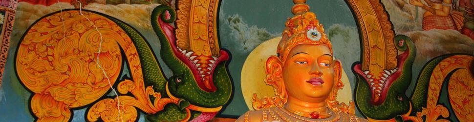 Sri Lanka - Überraschend anders
