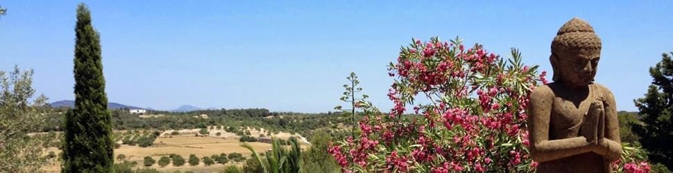 Mallorca - Haus der Stille - Traditionelle Shamana Kur (Ayurveda)