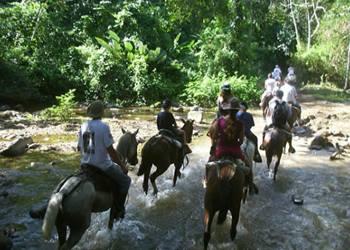 Bild 9 zum Reiseprogramm von Costa Rica for Family
