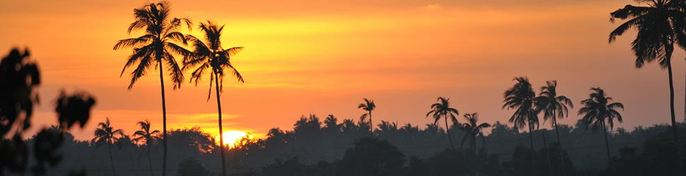 Südindien - Goa - Yogamagic Eco Retreat, Oase der Ruhe und Schönheit