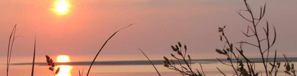Wattenmeer - Yoga im Einklang mit den Kräften der Natur...